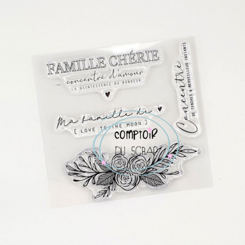 Tampons transparents Famille chérie - 4 pcs
