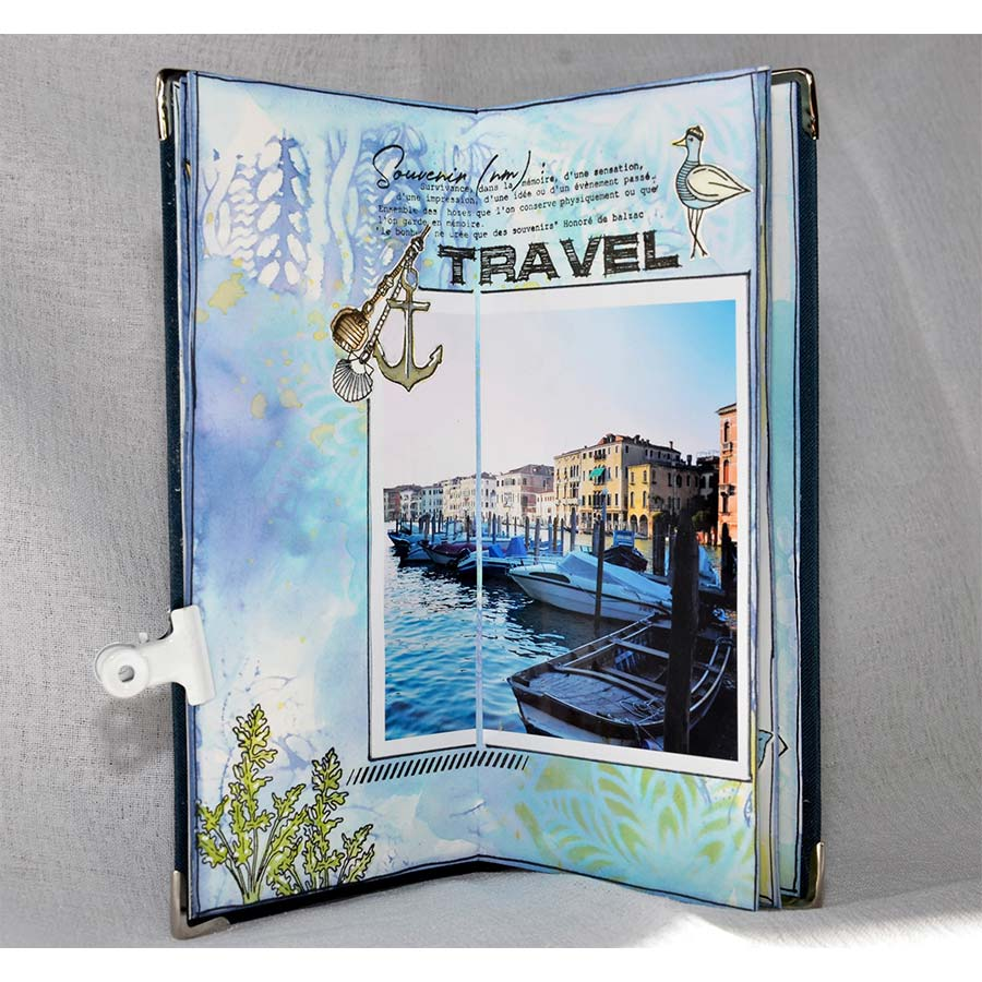Tampons transparents Globe Trotter