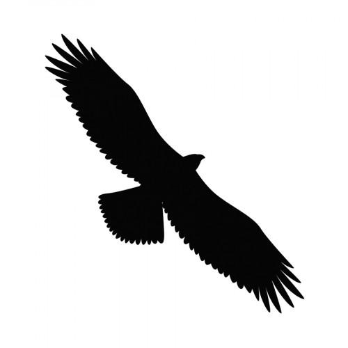 Die Aigle - 10 x 3,3 cm