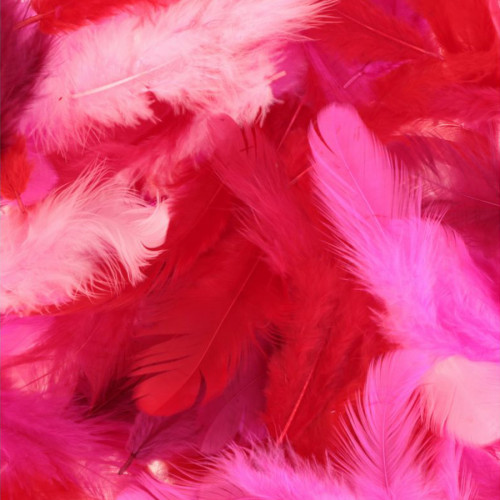 Plumes Tons rouges 10 g
