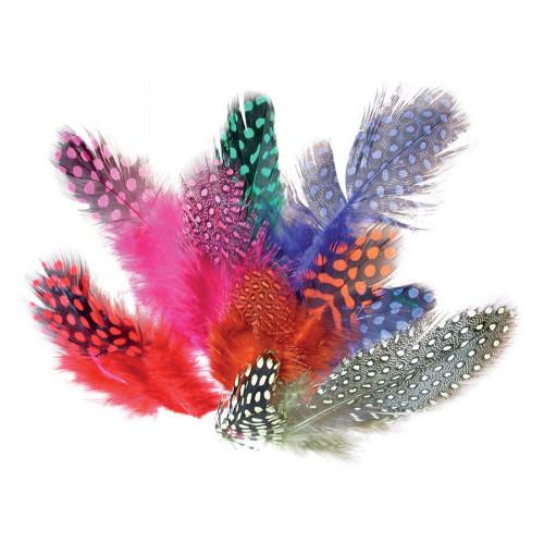 Assortiment de plumes colorées pintade - 10 g