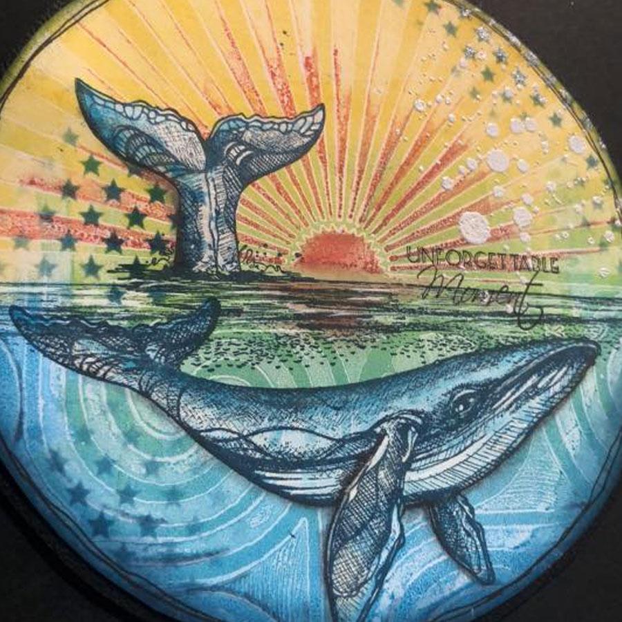 Tampons Cling Le chant des baleines - 3 pcs