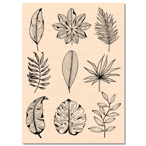 Tampon bois Feuilles de saison - 10 x 13 cm