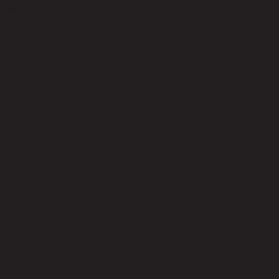 Feuilles de transfert Infusible Ink Noir - 2 feuilles de 30,5 x 30,5 cm
