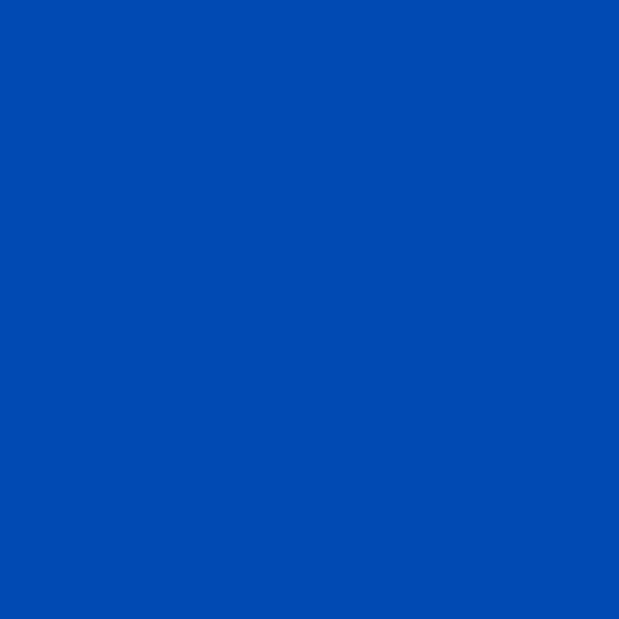 Feuilles de transfert Infusible Ink Bleu - 2 feuilles de 30,5 x 30,5 cm