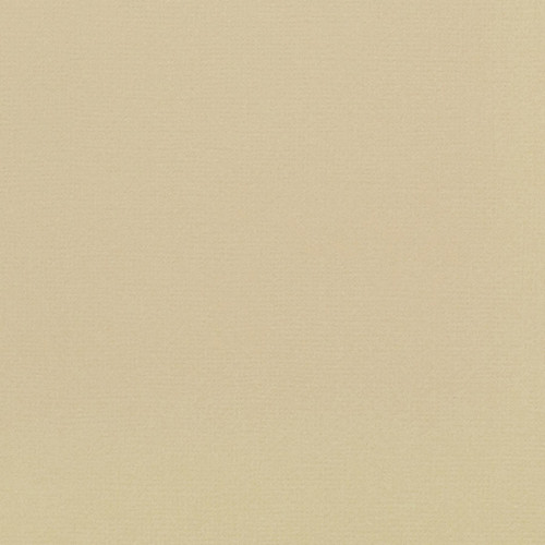 Papier cardstock Weave Oatmeal