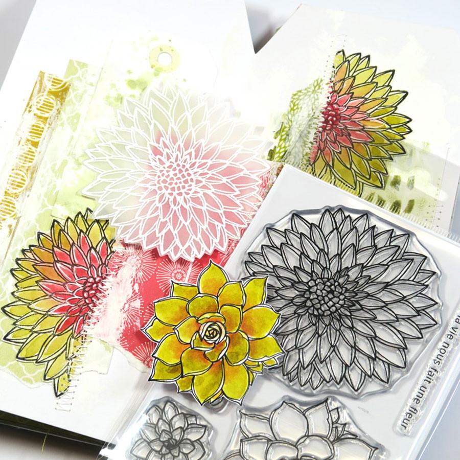 Tampons transparents Fleurs de cactus - 5 pcs