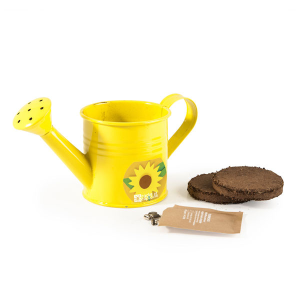 Mini arrosoir jaune avec graines de tournesol