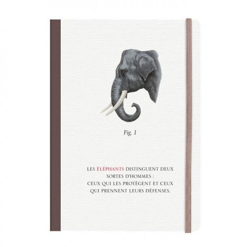 Histoires naturelles - Bestiaire - Carnet dos carré - 10,5 x 14,8 cm - 144 pages
