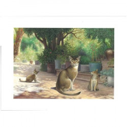 Images - Animaux