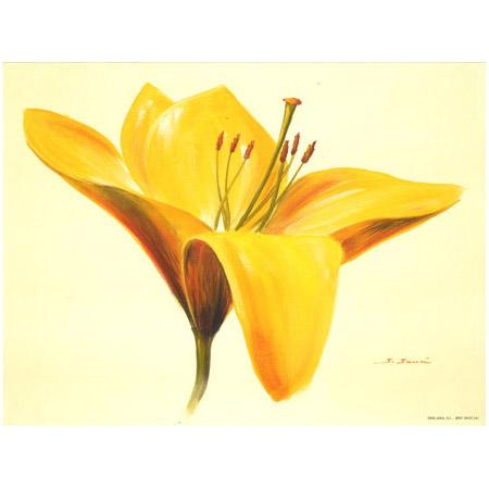 Image - Grosse fleur jaune - 24 x 30 cm