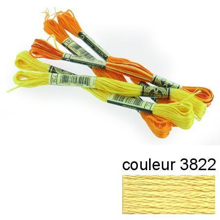 DMC 117 mouliné, fils à broder - couleur 3822