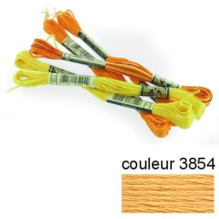 DMC 117 mouliné, fils à broder - couleur 3854