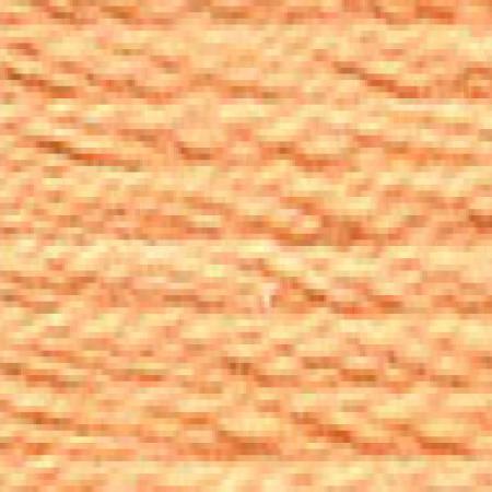 DMC 117 mouliné, fils à broder - couleur 3825