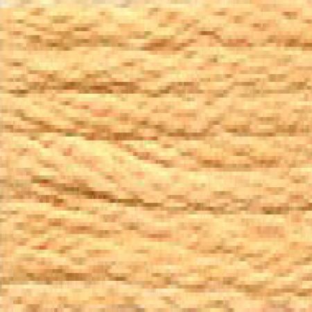 DMC 117 mouliné, fils à broder - couleur 3827