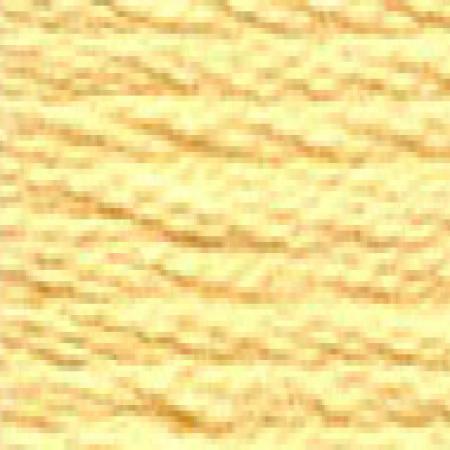 DMC 117 mouliné, fils à broder - couleur 3855
