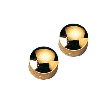 12 plots magnétiques dorés