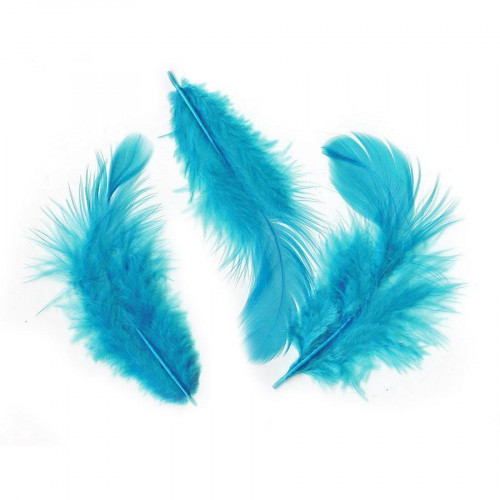 Plumes turquoise - 10 g