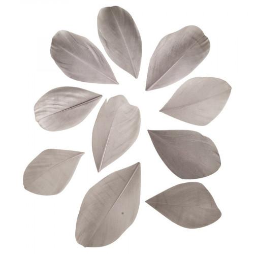 Plumes coupées - gris clair - 5 à 6 cm - 36 pcs