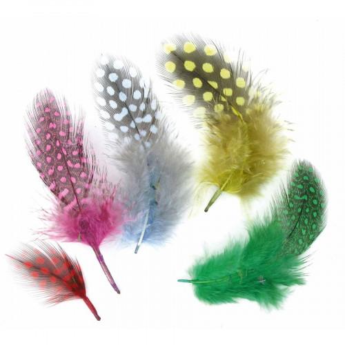 Plumes multicolores - 10 cm