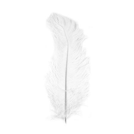 Plume d'autruche - Blanc - 30 cm