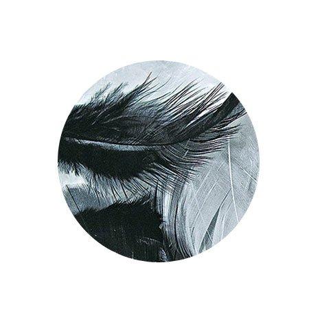Plumes - Noir et blanc - 3-10 cm - 10 g