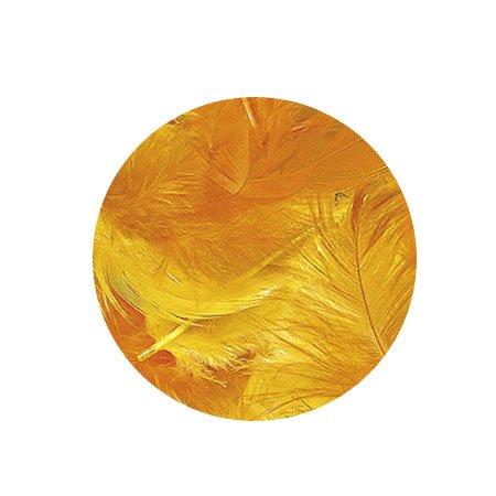 Plumes - Jaune et orange - 3-10 cm - 10 g