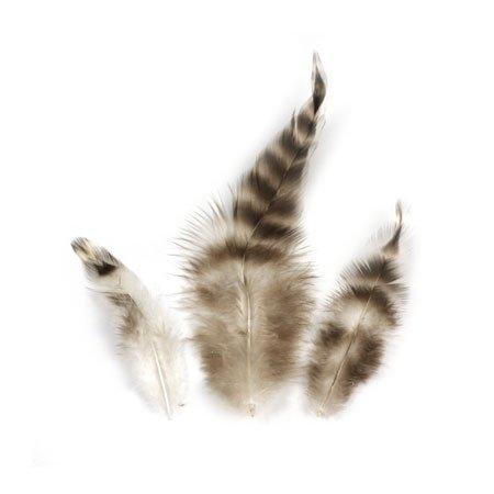 Plumes de chinchilla - 7,5-9 cm - 3 g