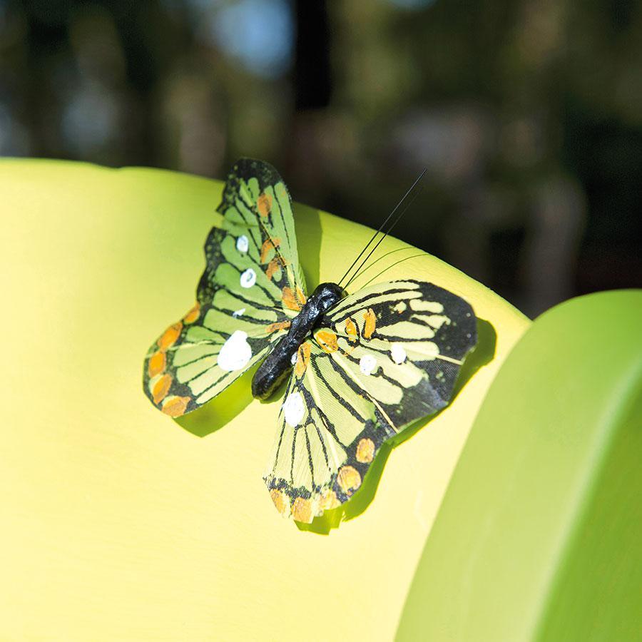 Set de 6 papillons