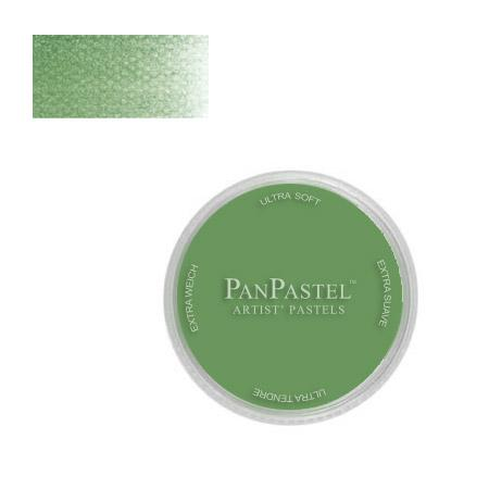 Panpastel 9 ml - Chromium Oxide Green
