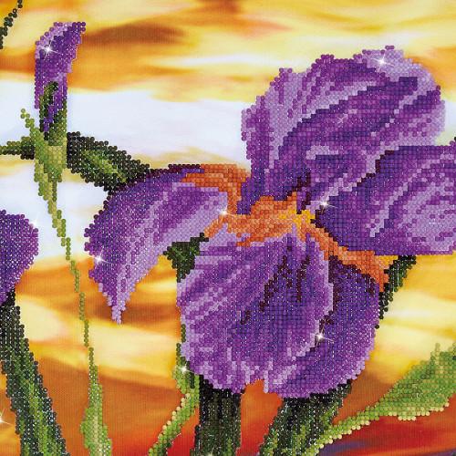 Kit Tableau Strass Diamond Dotz Iris au coucher du soleil
