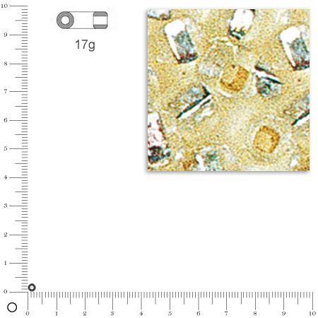 Mini-rocailles intérieur argenté - Argent - Ø 2 mm x 17 g