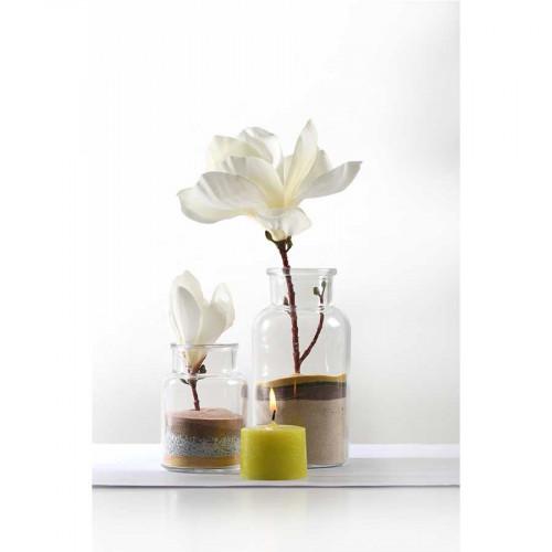 Vase médicinal en verre - Ø 8 cm x 16 cm