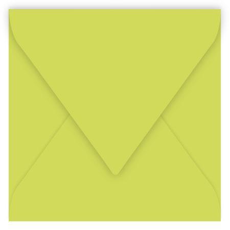 Pollen - 20 enveloppes carrées 12 x 12 cm - Vert bourgeon