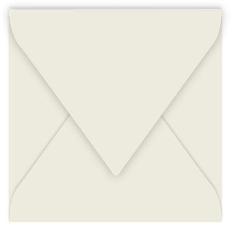 Pollen - 20 enveloppes carrées 16.5 x 16.5 cm - Gris perle