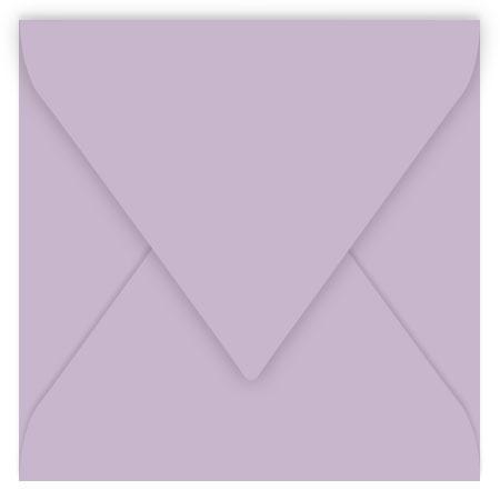 Pollen - 20 enveloppes carrées 14 x 14 cm - Glycine