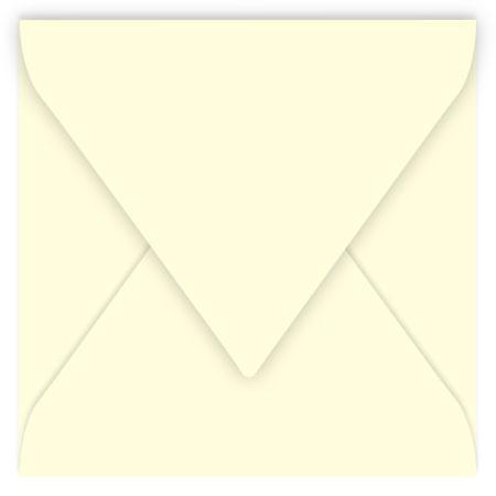 Pollen - 20 enveloppes carrées 16.5 x 16.5 cm - Ivoire