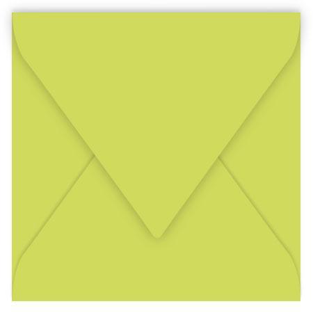 Pollen - 20 enveloppes carrées 14 x 14 cm - Vert bourgeon