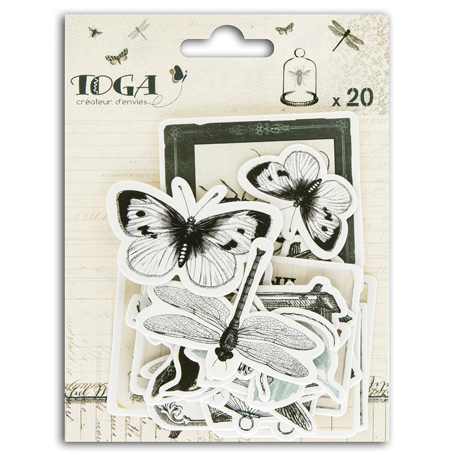 Cabinet de Curiosités - 20 Chipboards