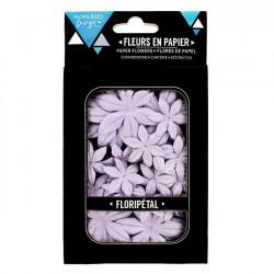 Floripétal - Fleurs Campanule - 40 pcs