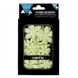 Floripétal - Fleurs Aloe Vera - 40 pcs