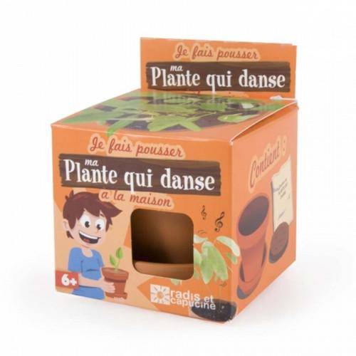 Kit Je fais pousser ma plante qui danse
