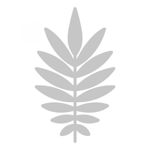 Die Feuille de Palmier - 8 x 13,5 cm