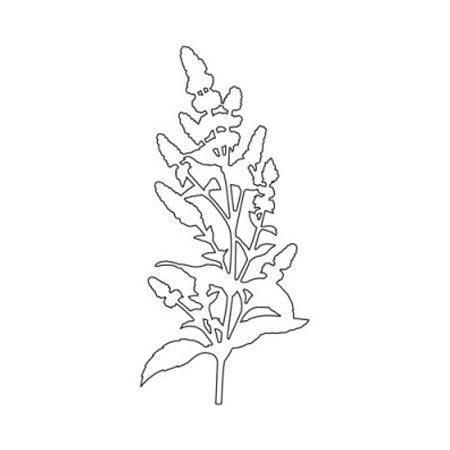 Die - Sweety Cuts - Les Solos - Fleur des champs