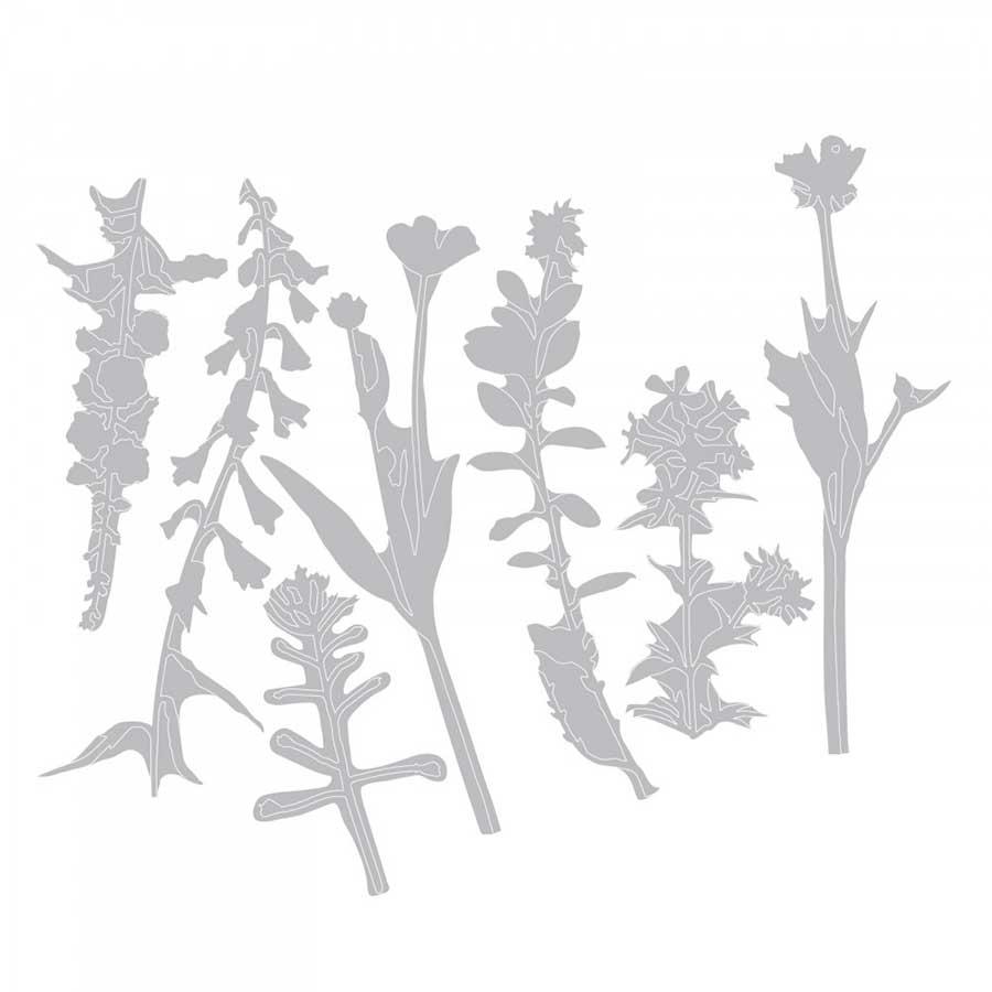 Thinlits Die Set 7 pièces - Fleurs sauvages 2 par Tim Holtz