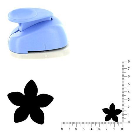 Moyenne perforatrice - Fleur 4 - 2.5 cm