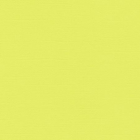 Bazzill Paper - Limeade