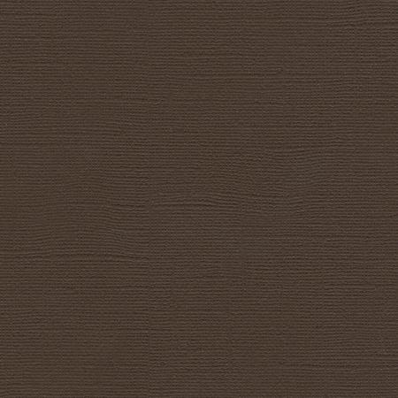 Bazzill Paper - Brown