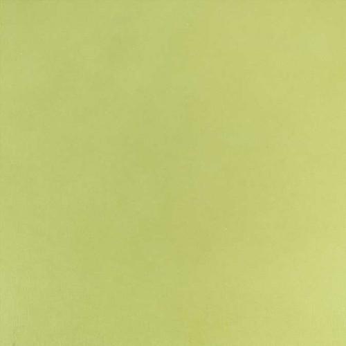 Cardstock adhésif - 30,5 x 30,5 cm - citron vert