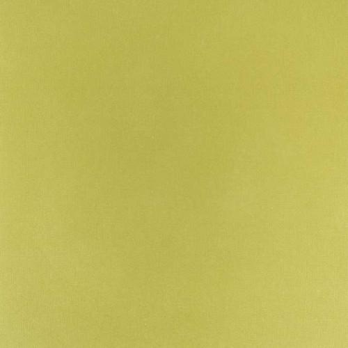 Cardstock adhésif - 30,5 x 30,5 cm - vert jaune